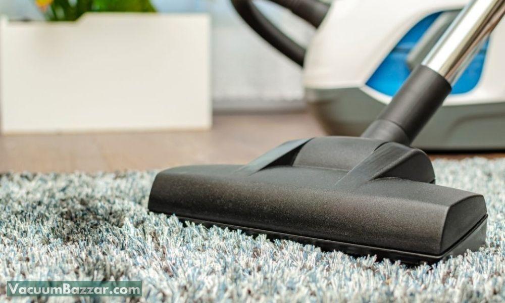 Vacuuming Fleas with Bagless Vacuums